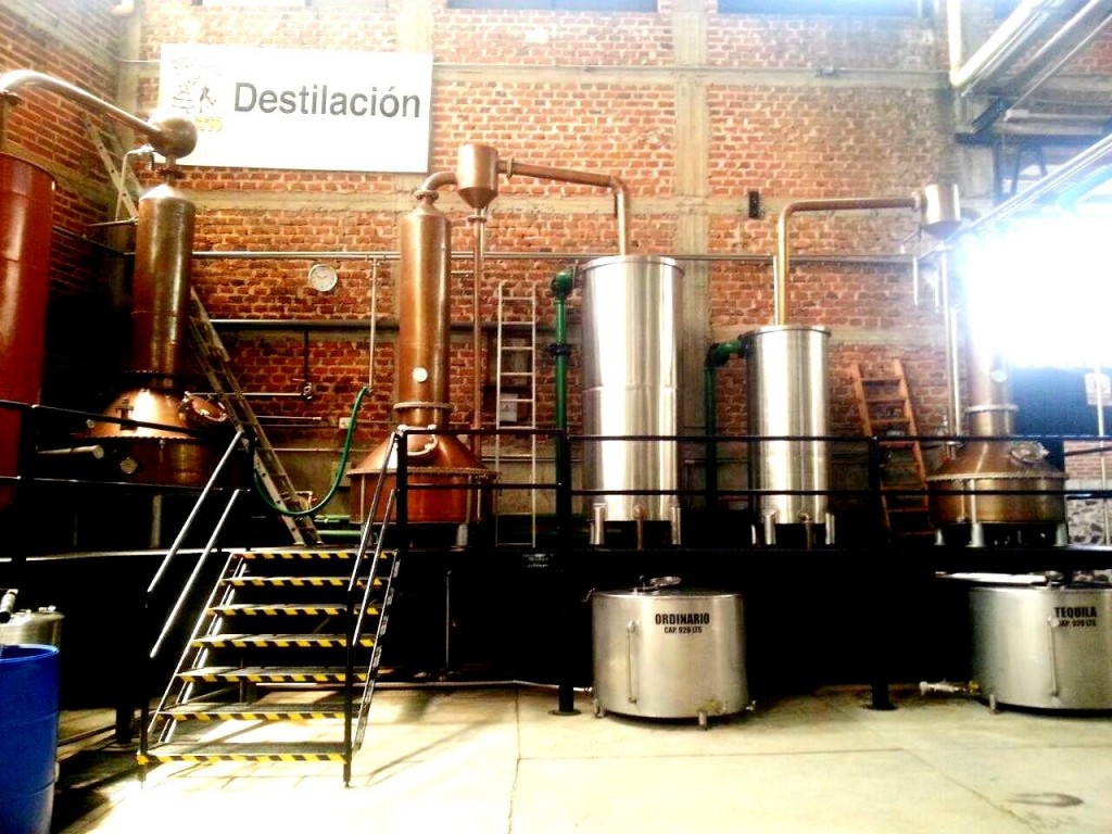The double distillation process is performed first in a stainless steel pot still of 3,500 liter capacity and then in a copper pot still of 300 liter capacity.